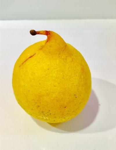 Lemon (study) II, 2016